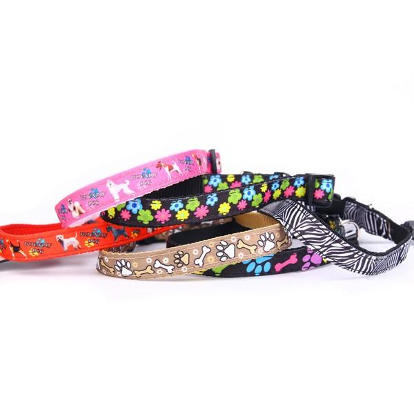 Hundehalsband, Halsband, Nylonhalsband, Hundehalsband Nylon, Neonhalsband, Hundeleine, Führleine, Neonleine, Reflexion Leine, Cityleine, Neon Hundeleine, Nylonleine