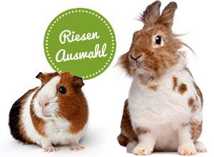 Kaninchen, Hamster und Co
