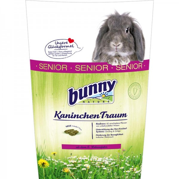 Bunny Kaninchen Traum senior