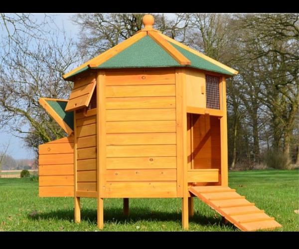 Pavillon Hühnerstall von zooprimus mit Nistkasten